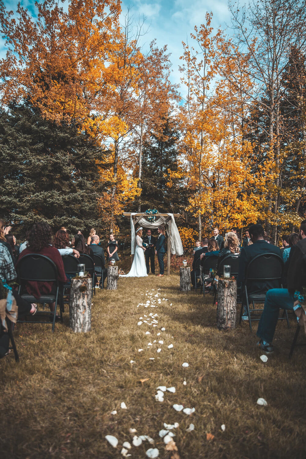 How to Plan Your Backyard Wedding Planning Tips and Tricks Warrior Rose Events 2