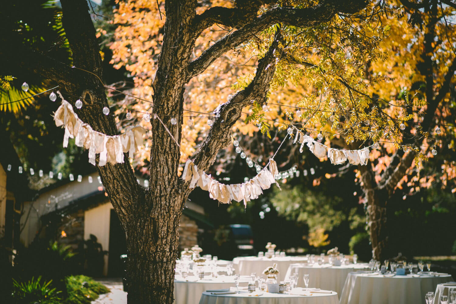 How to Plan Your Backyard Wedding Planning Tips and Tricks Warrior Rose Events 5