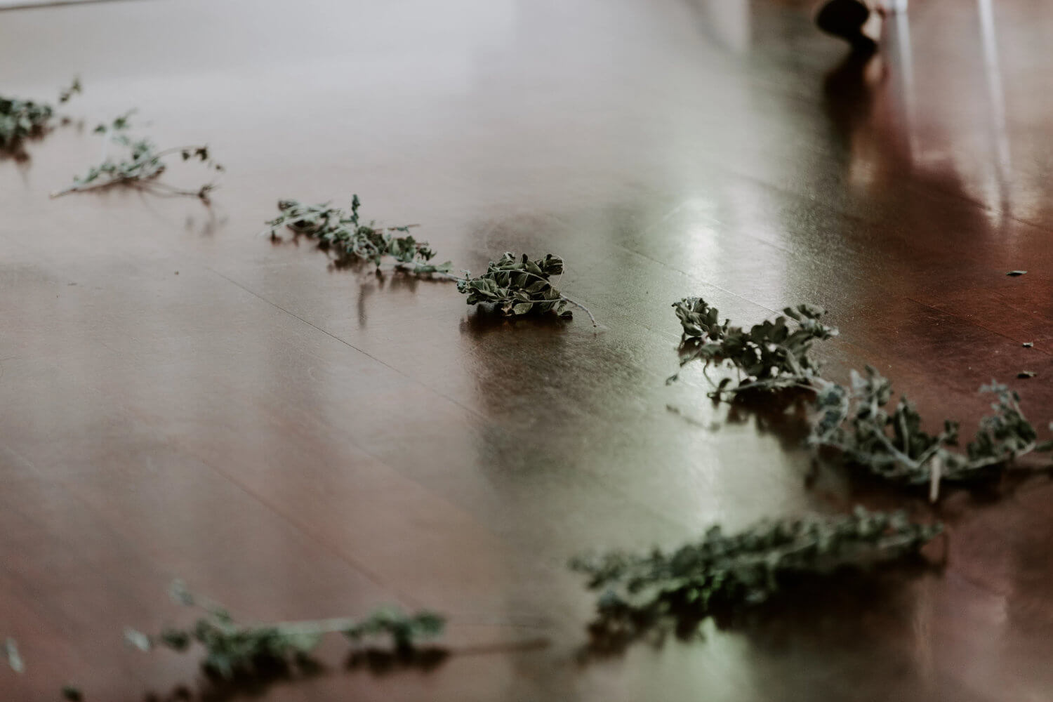 How to Use Greenery as Decor at Your Wedding Planning Tips Warrior Rose Events